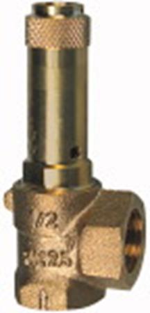 Obrázok pre kategóriu Poistné ventily